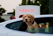 What to consider when buying an electric car